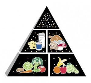 ERFOE Food pyramid