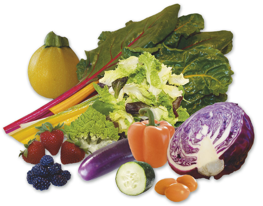 Macronutrients vs. Micronutrients – Put a palette of colors on the table!